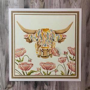 Highland Cow :Isla